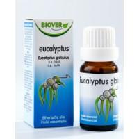 Eucalipto (EucalyptusGlobulus) Óleo Essencial BIO 10ml